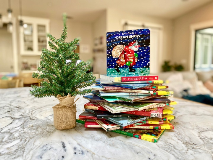25 Christmas Books for 2019