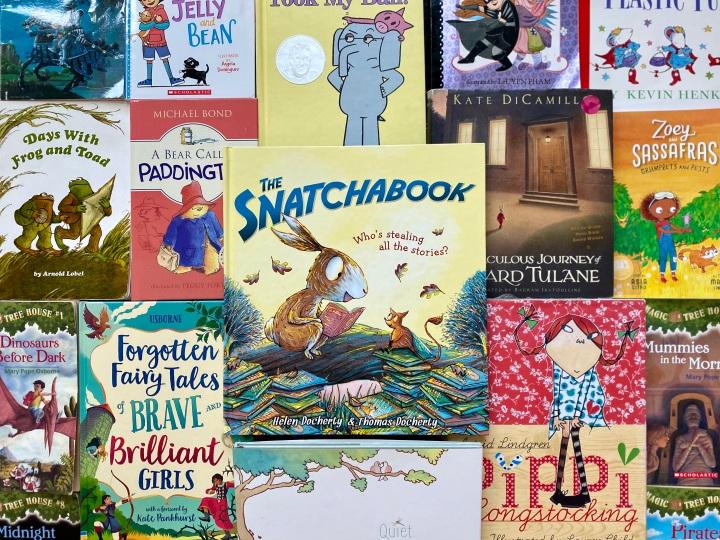 The Snatchabook by HelenDocherty