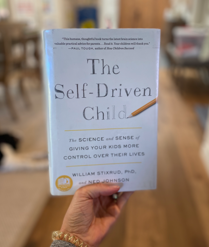 The Self-Driven Child by William Stixrud and Ned Johnson